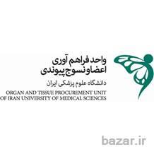 پزشک و پرستار هماهنگ کننده پیوند اعضا