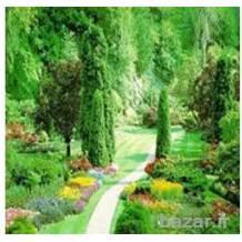 آموزش اسرار باغبانی ، آموزش اصول باغبانی و گل کاری، طراحی فضای سبز